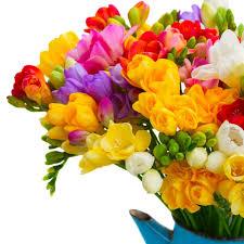 tesco flowers online